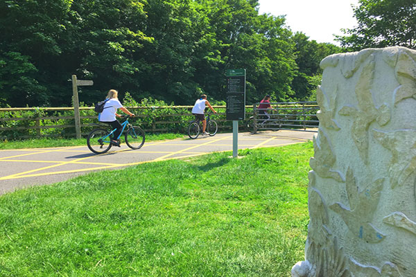 Cyclists use pathways in Lee Valley Artway