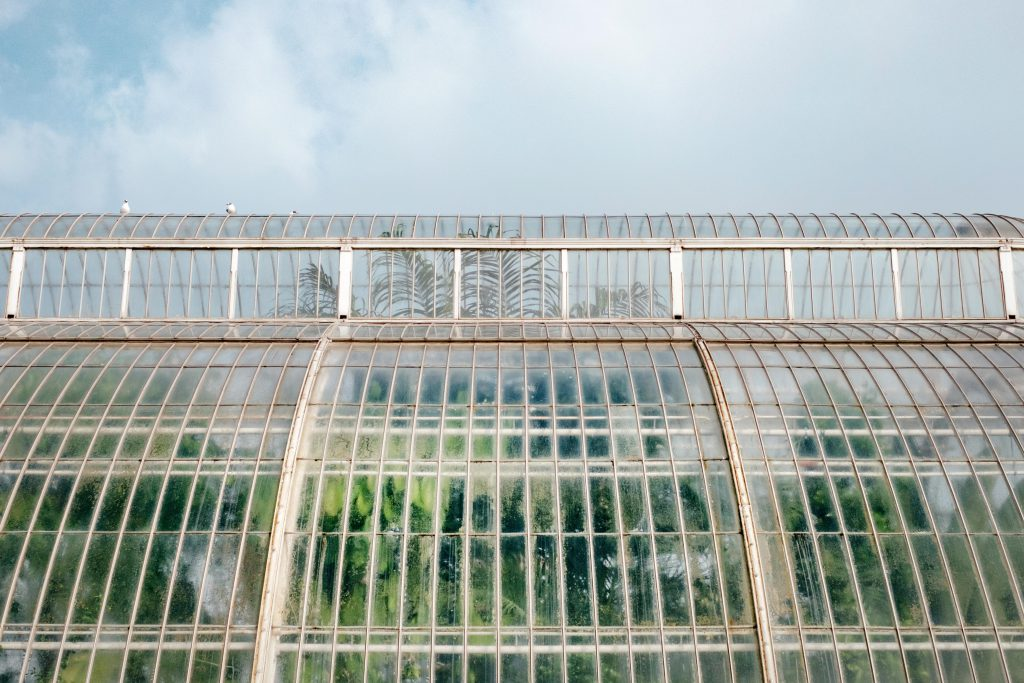 Glasshouse at Kew Gardens