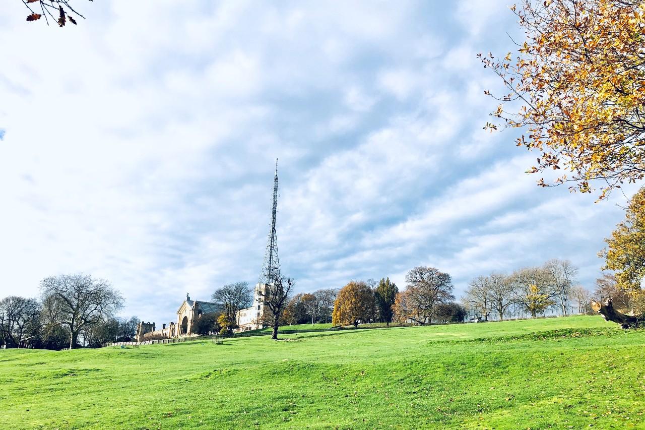 Alexandra Palace and trees in Alexandra Palace Park