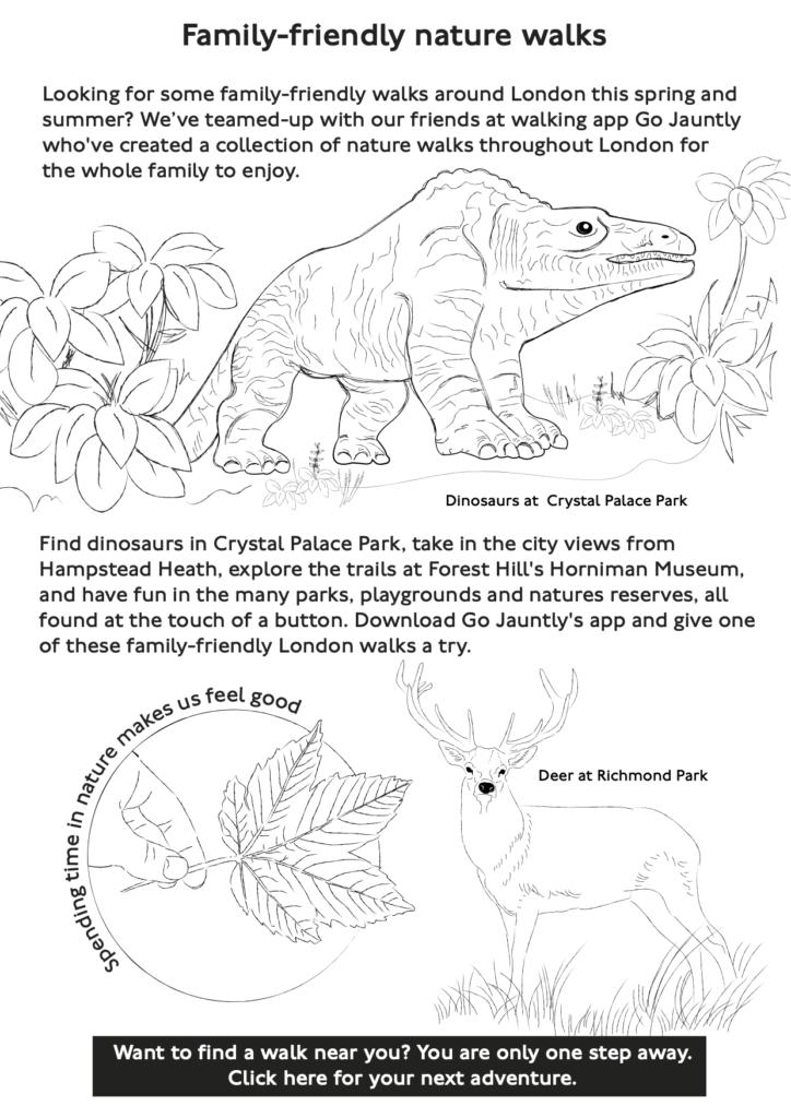 Family-friendly walks activity sheet