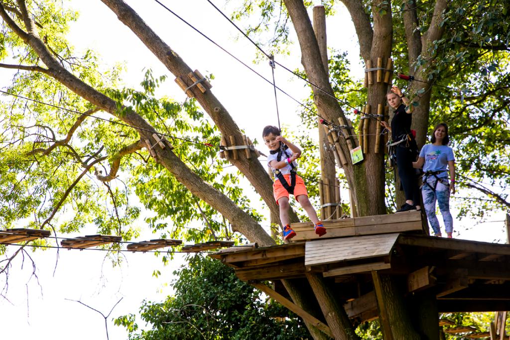Family swinging from the treetops at Go Ape Alexandra Palace