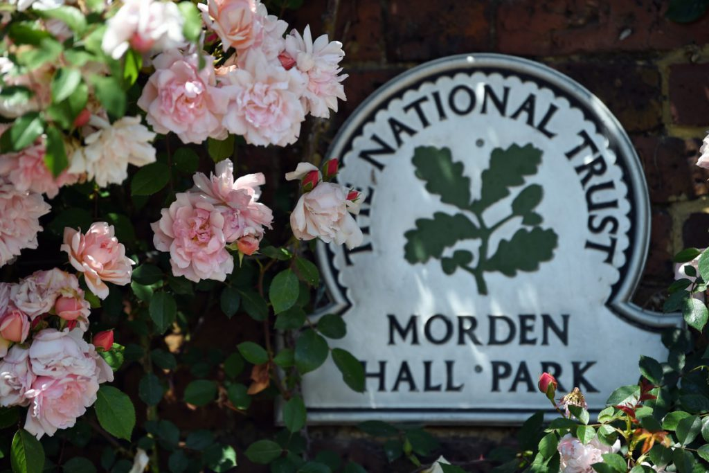 The Rose Garden at Morden Hall Park with a National Trust sign