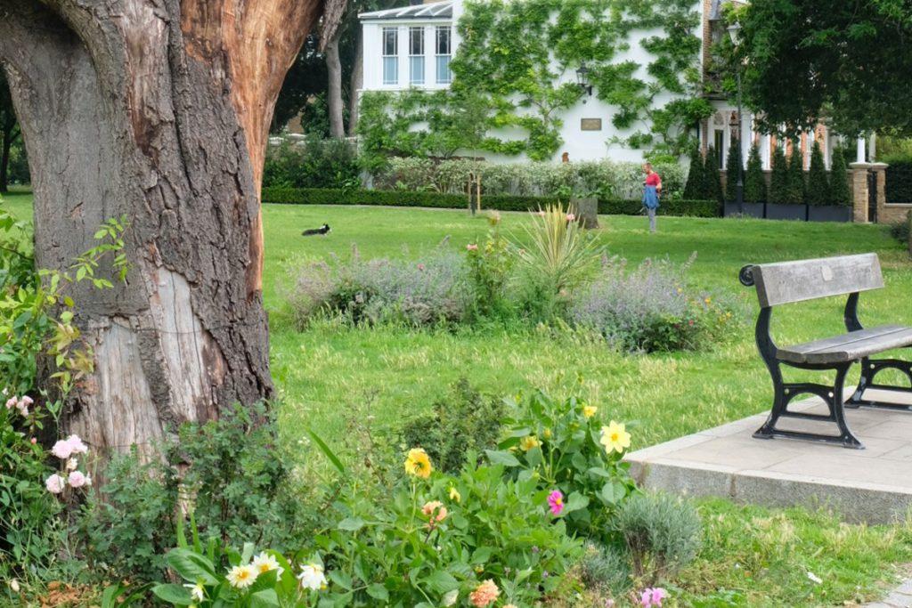 Bench in flower garden